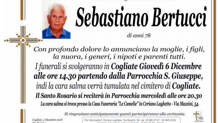 Bertucci Sebastiano