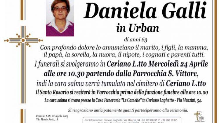 Galli Daniela