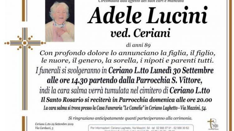 Lucini Adele