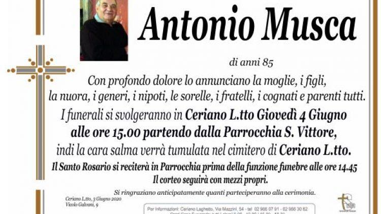 Musca Antonio