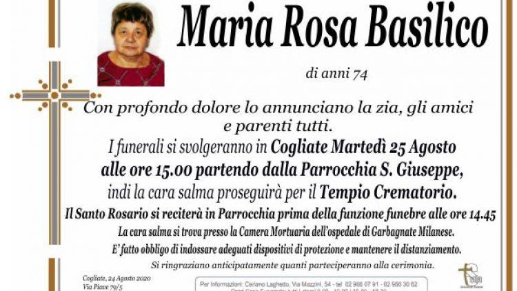 Basilico Maria Rosa
