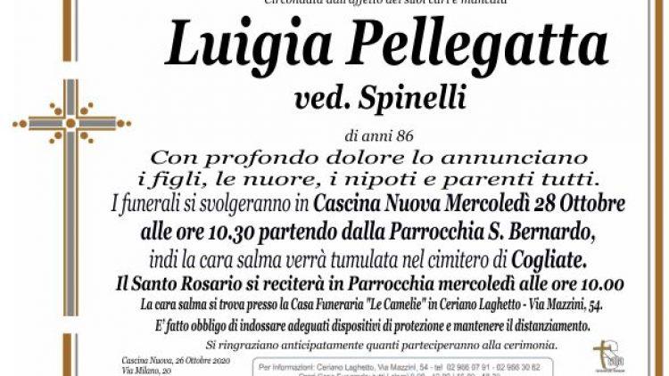 Pellegatta Luigia