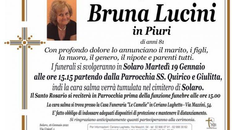 Lucini Bruna