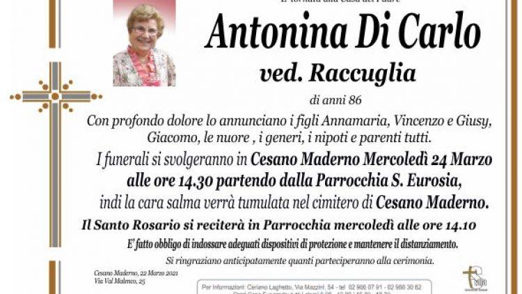 Di Carlo Antonina
