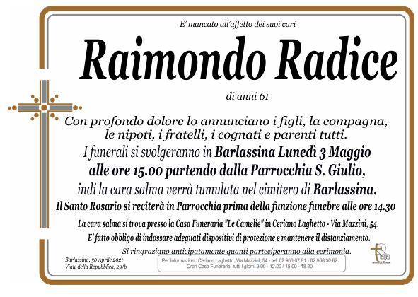 Radice Raimondo