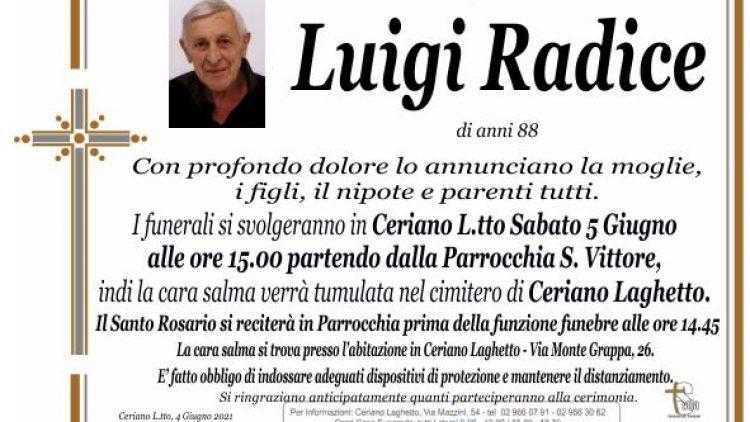 Radice Luigi
