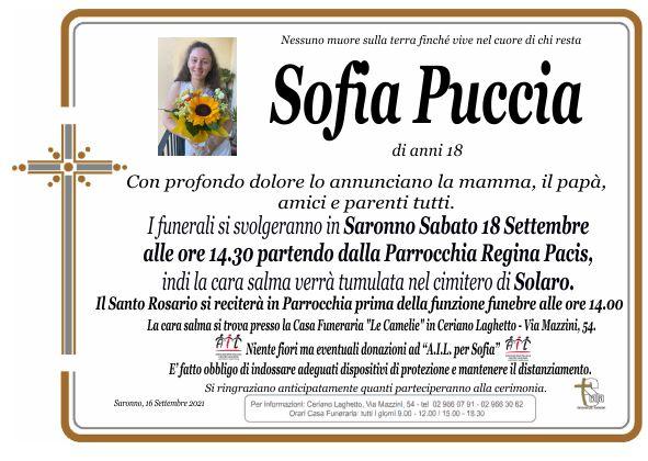 Puccia Sofia